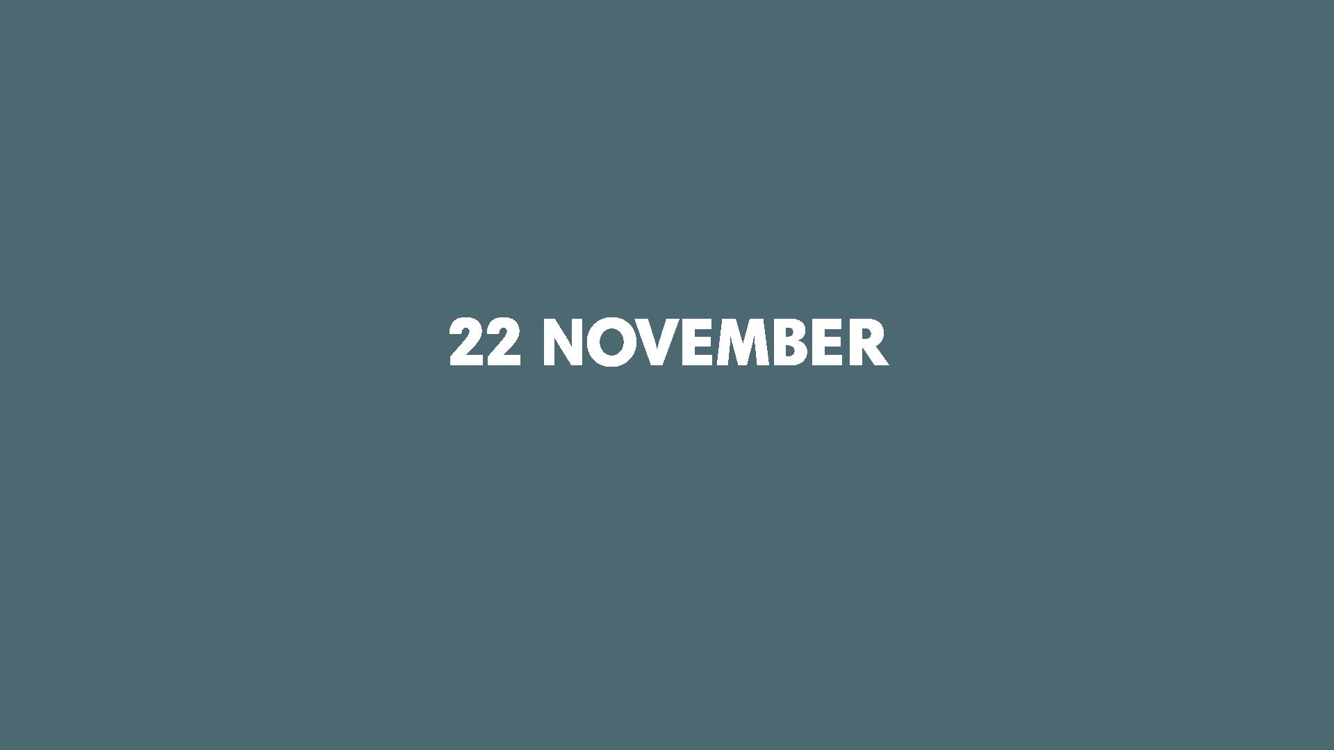 22 November